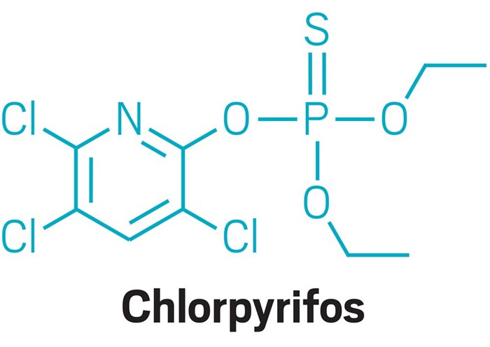 chemical structure of the insecticide chlorpyrifos